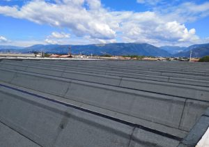 impermeabilizzazioni.coperture.industriali.tetto.travi.alari.mosolecorradosrl.06