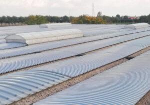 installazione-lucernari-apribili-su-rifacimento-tetto-capannone-industriale-mosolecorradosrl-01