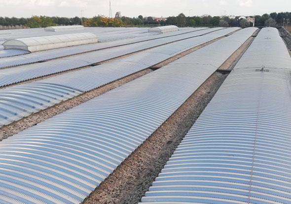 nuova-copertura-metallica-grecata-curva-su-capannone-industriale-mosolecorradosrl-02